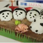 panda-rice